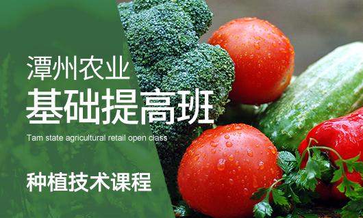 潭州农业基础提高班